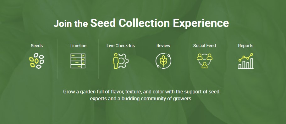 What is the the Seed Collection Experience?